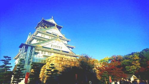 縞板-大阪城①
