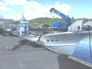 縞板-漁船①