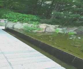 縞板-新梅田シティ②